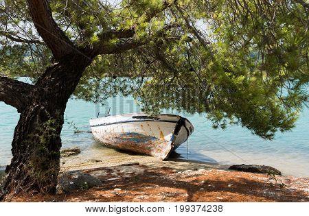 Small fishing wooden boat resting on the coast of Glarokavos beach under a pine tree in Chalkidiki peninsula Greece.
