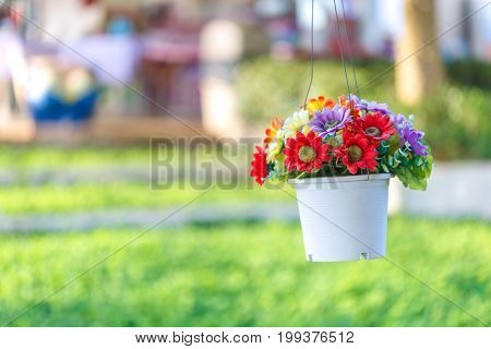 Fake flower decoration by hanging with blur background