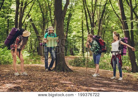 Four Tourists Stopped For Rest In The Forest, Holding Map, Trying To Find The Way, Disscus It, All H