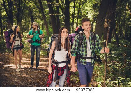 Four Best Friends Are Walking In Autumn  Forest, Amazed By The Beauty Of Nature, Wearing Comfortable