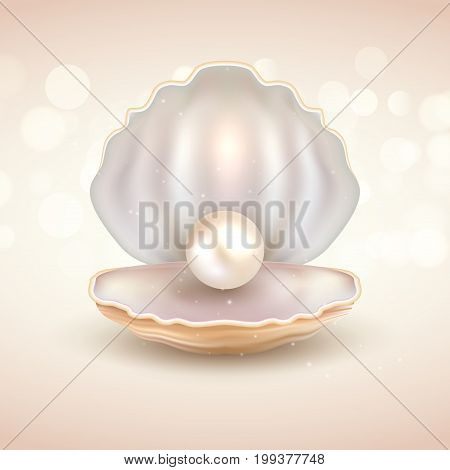 Pearl open shell realistic illustration. Natural beautiful single pearl sea jewelry.
