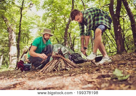 Low angle close up of two young male tourists in the wood organizing the camp fire for barbeque helping each other team work sunny day green forest