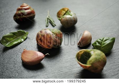 Delicious snails in green sauce with herbs and garlic on dark table