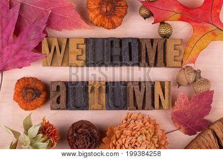 Welcome autumn wood text with autumn decorations