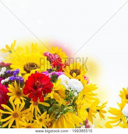 Bright fresh fall bouquet flowers over white background