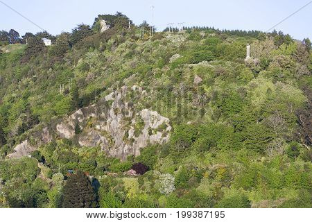 The morning view of a green lookout hill in Port Chalmers the suburb of Dunedin city (New Zealand).