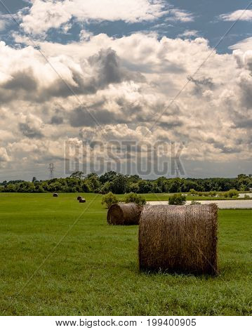 Vertical landscape of round hay bales in a green hay field with a stock pond and cloudy sky in the background.