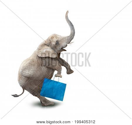 Funny shopper going to supermarket in Black Friday for low cost shopping. Elephant as a icon on white background.