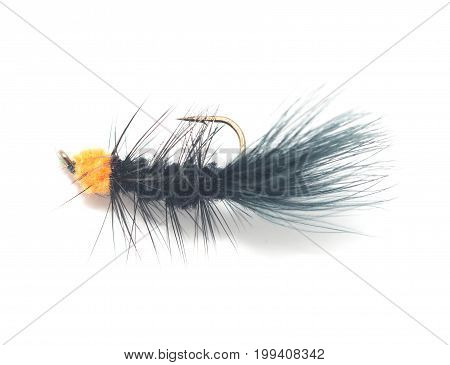 fly for fishing on white background . A photo