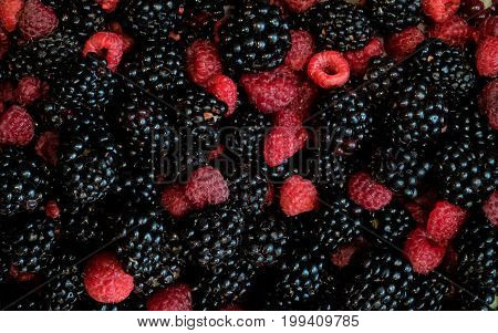 Raspberries and blackberries mixed, 100% Organic, picked fresh washed ready to eat. Fruit background.