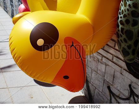 Ring yellow inflatable pool beach toy duck for sale in summer resort market