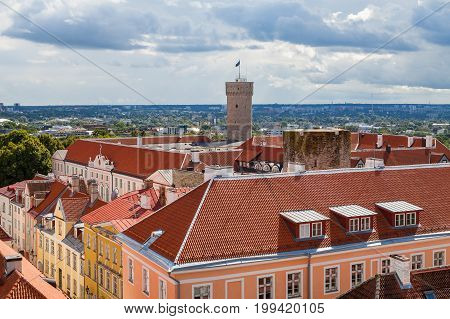 Tallinn view of old town castle with red tiled roofs and main tower Long Herman