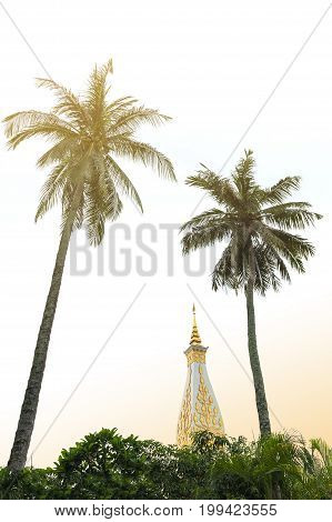 Coconut Palm Tree At Temple Of Phra That Phanom Stupa, One Of The Most Important Theravada Buddhist