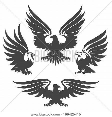 Heraldry eagles, hawks and falcons drawn in tattoo style. Vector illustration