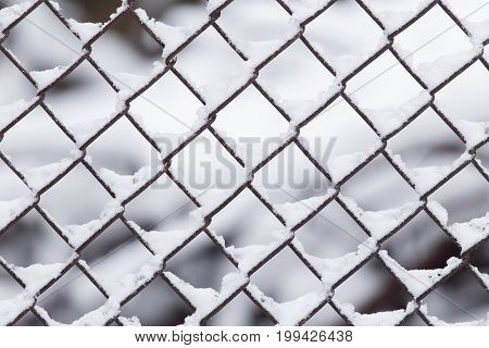 Close-up of barbwire covered by snow . A photo