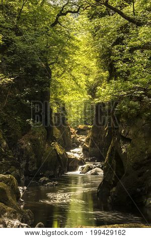 Stunning Ethereal Landscape Of Deep Sided Gorge With Rock Walls And Stream Flowing Through Lush Gree