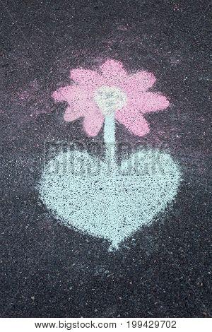 chalk drawing flower on asphalt, road, close up