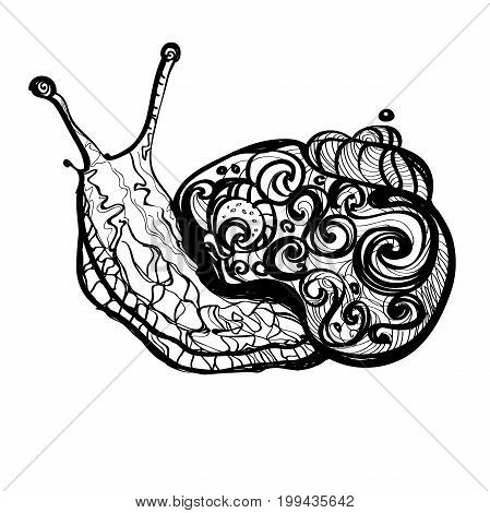 Fantasy sketch of snail Hand drawn doodle vector outline illustration decorated with abstract ornaments. Abstract monochrome drawing Isolated on a White background