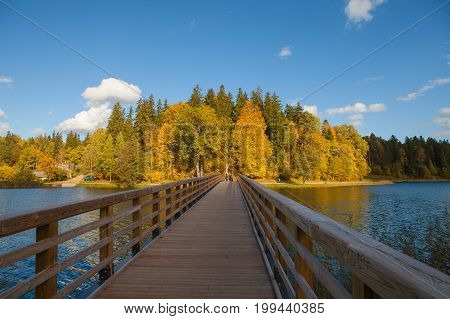 Fall forest behind the lake. Wooden bridge though the lake. Autumn moment.