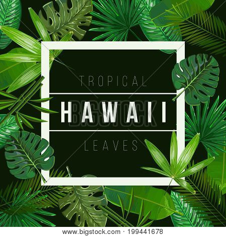 Vector Tropical leaves on black background.Nature illustration With the inscription of Hawaii.