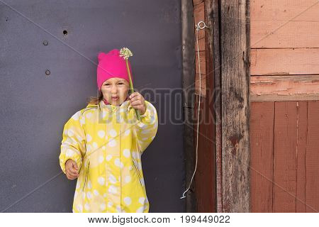 Portrait of a little annoyed girl in a yellow raincoat and a pink hat with a plant in her hand. She is standing in frount of a grey metal door in a village.