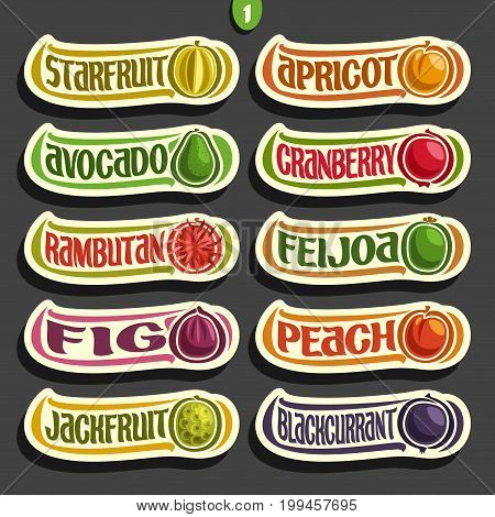 Vector Set of colorful Fruits and Berries Labels: collection of exsotic fruit logo with lettering title text isolated on black, set of cartoon simple labels for juice or candy, abstract fruits stikers