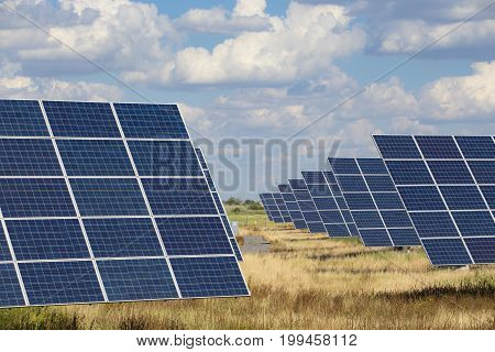 Solar Panels Standing At The Field