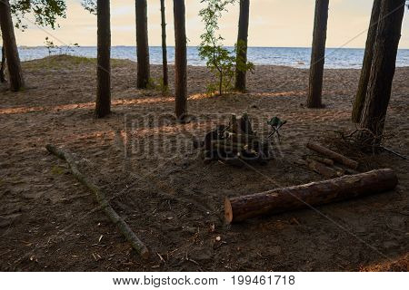 Calm and tranquil morning scene outdoors in forest with river or sea in background. Firewoods among trees waiting for someone to set camp fire. Wilderness nature camping and adventure concept
