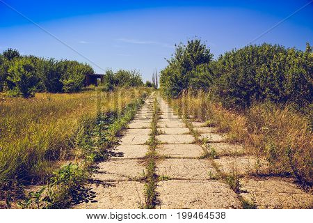 Pathway of concrete tiles, overgrown with grass. Post apocalypse concept, toned