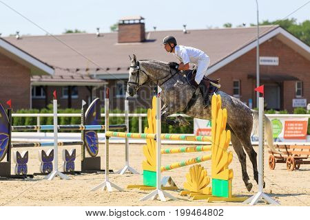 TAGANROG ROSTOV-ON-DON REGION AUGUST 6 2017: Competitions in equestrian sport devoted to the Day of Liberation of the Neklinovskiy district. Horseman on the pinto horse jumps over the yellow barrier