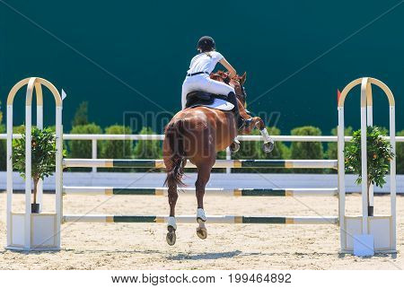TAGANROG ROSTOV-ON-DON REGION AUGUST 6 2017: Competitions in equestrian sport devoted to the Day of Liberation of the Neklinovskiy district. Young rider jumps on a chestnut horse through an obstacle