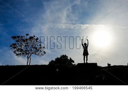 Silhouette Woman Hiker With Dogs Raises Hands On Hill Peak