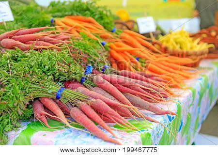 Fresh Red Carrots On Display At The Farmers Market.