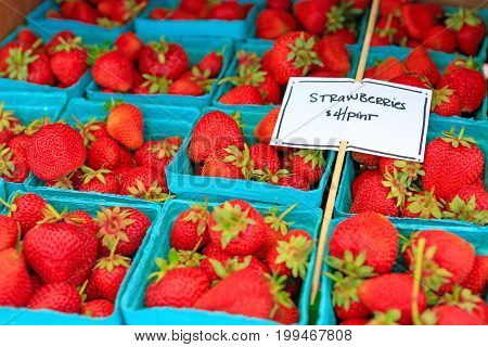 Organically Grown Strawberries For Sale At The Downtown Farmers' Market.