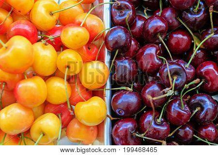Fresh Organic Cherries At The Local Farmers' Market.