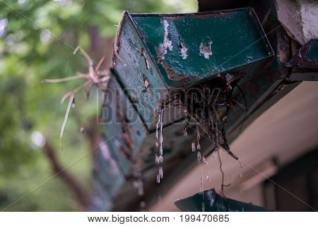 Raining gutter on the roof of the balcony. Old gutter for water drainage from the roof.