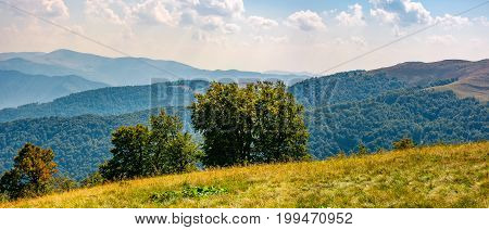 Beautiful Panorama Of Carpathian Mountains
