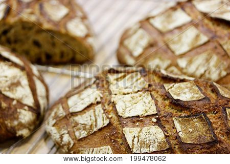 Closeup of fresh baked brown bread. Selective focus.