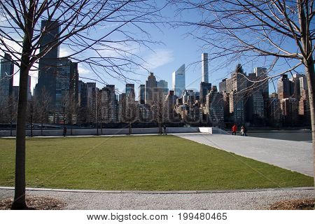 Grass field at Roosevelt island and buildings in Manhattan