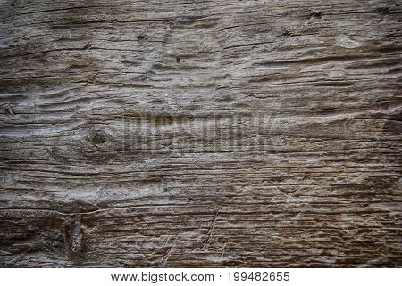 Old wood board wooden texture closeup background