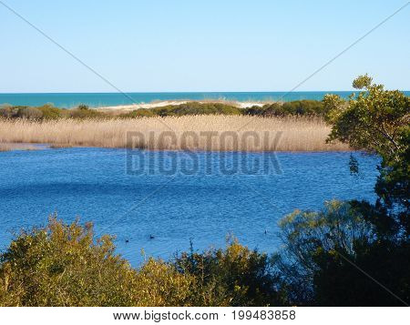 Water view from Myrtle Beach Hiking Trail