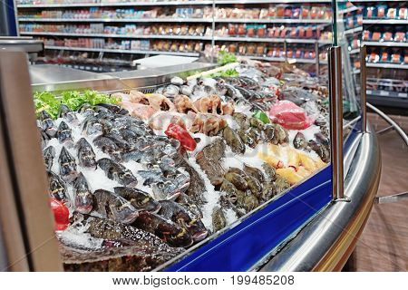 Great quantity of fresh fish and seafood on iced market display, toned image