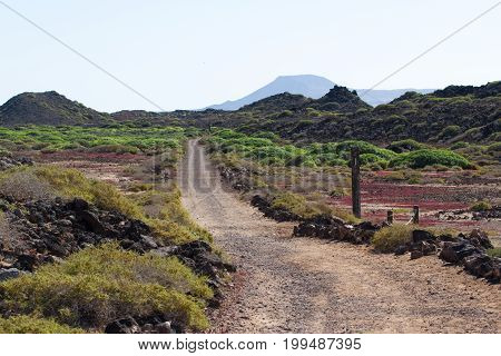 Dirt road in Spain, Canarian islands. Lobos island. Prarie. Nobody track, countryside way