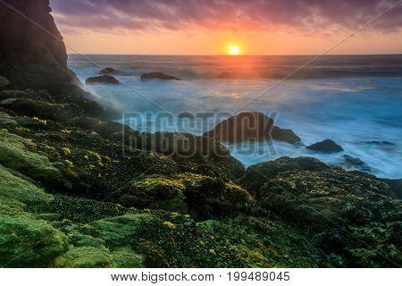 Gray Whale Cove State Beach. Half Moon Bay, San Mateo County, California, USA.