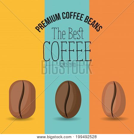 color poster with set premium coffee beans of the best coffee since 1970 vector illustration