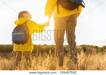 Cute boy is hiking with his father in the nature. He is holding male hand and looking at parent with trust. They are standing on grassland with backpacks. Focus on their back