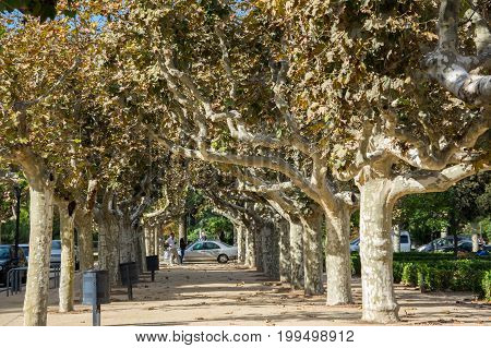 Parc de la Ciutadella (Park Citadel) in Barcelona Catalonia Spain