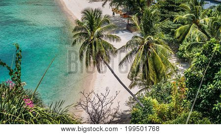 Top view of empty idyllic tropical white sandy beach with turquoise clear water and palm trees in gulf of thailand. Haad Salat beach. Ko Phangan, Thailand..