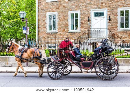 Quebec City Canada - May 29 2017: Horse carriage buggy with tour guide for tourists in old town road