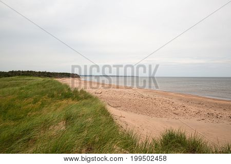 The Beach At Robinsons Island On Pei